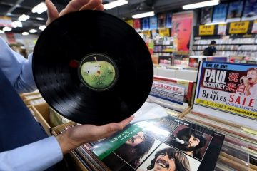 safeguard your vinyl records